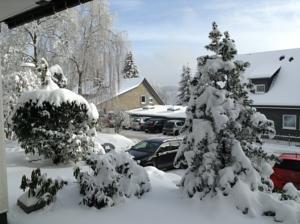 Winterberg Lodge in de winter