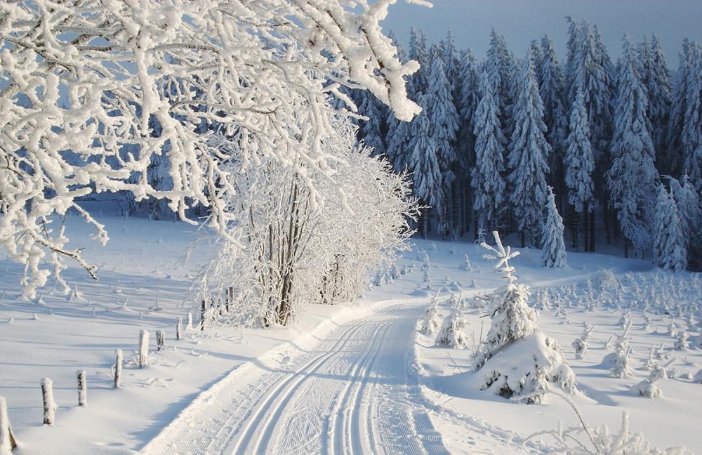 Voor iedereen iets te doen in de winter in Winterberg. Als je niet van skien houdt  zijn er genoeg andere activiteiten te doen