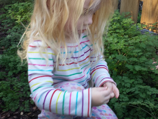 Risk and Reward in Nature Play