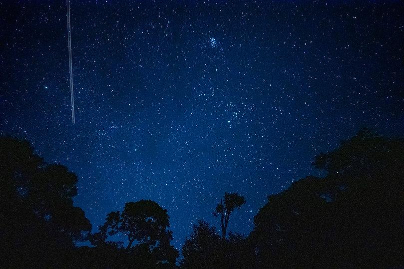庭から見える星空