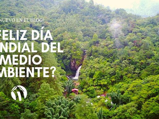 ¿Feliz Día Mundial del Medio Ambiente?