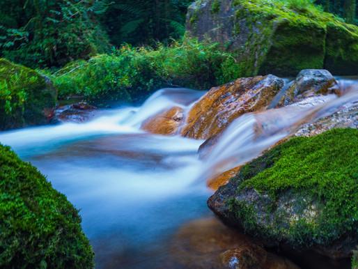 A propósito del Día Mundial del Agua