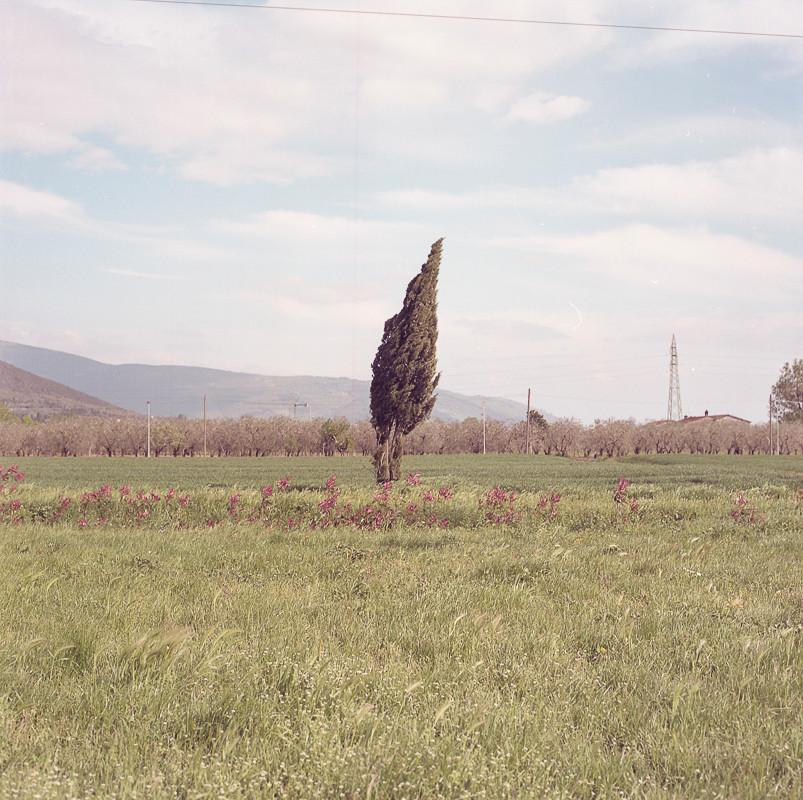 6x6 Tuscany (2019-2019)