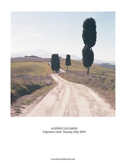 Cypresses Road. Tuscany, Italy 2019