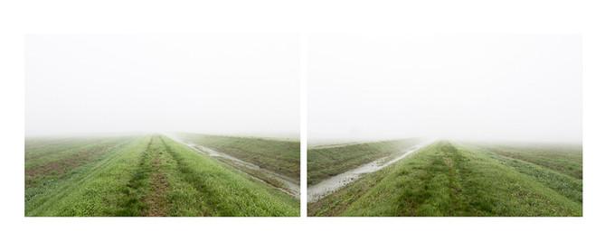 Double Fog / 2019