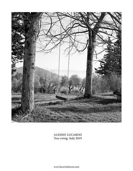 Tree swing. Italy 2019