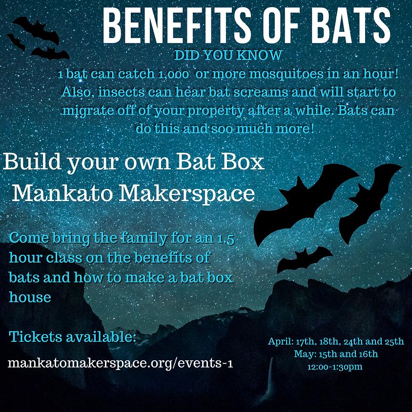 Build Your Own Bat Box