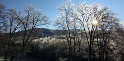 winter1_edited_edited_edited