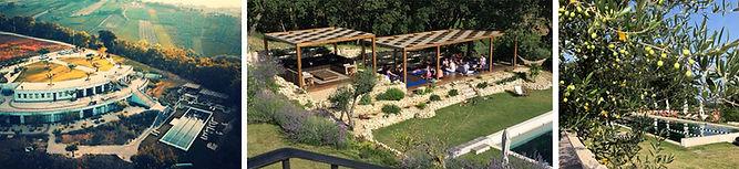 top_hus-yoga-pool.jpg