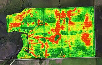 Field-Heat-Map PresicionTechnology.jpg