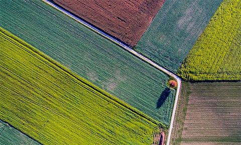 crop-aerial-view_edited.jpg
