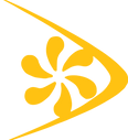 sas_icon_yellow.png