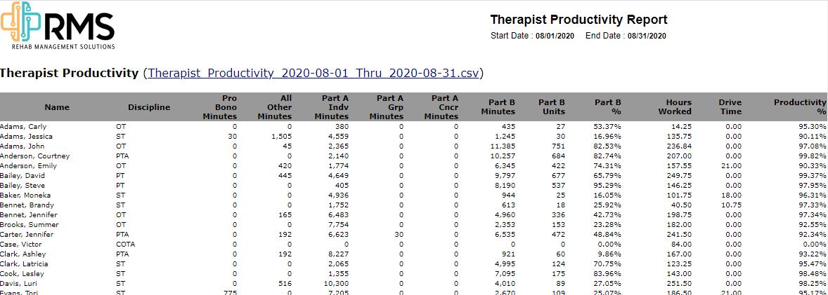 Therapist Productivity Report