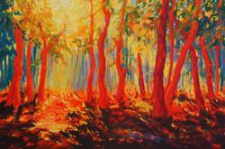 Rode bomen (verkocht)