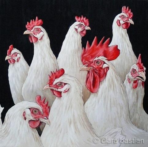7 kippen en 1 haan
