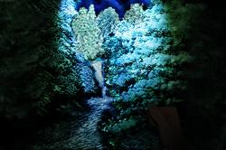 running through the woods very very very