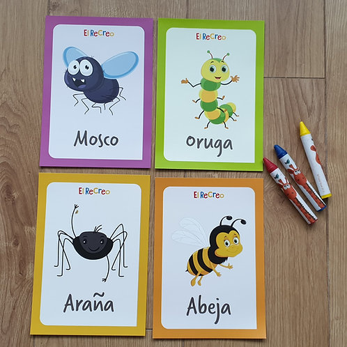 'Los bichos' Spanish double-sided Flash cards - A5 Bright and colourful