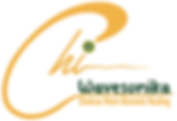 wavesonika logo.png