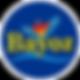 Logo Bayoz Borde Blanco.png
