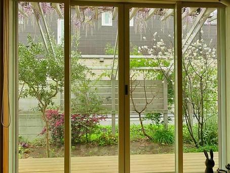 雨でも庭を楽しむ