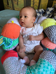 3 Month Baby Playing with Rattle