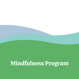 Mindfulness Program