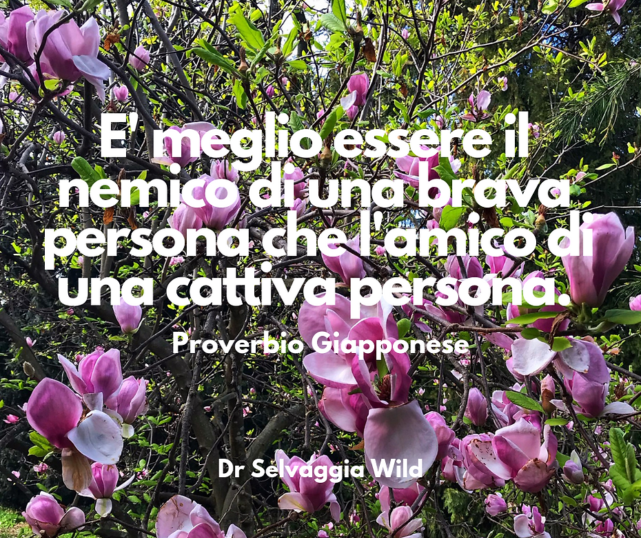 proverbio giapponese.png
