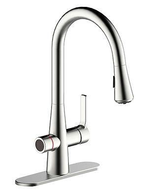 faucet-brushed-nickel.jpg