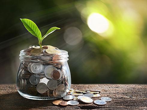 money-plant-glass-jar.jpg