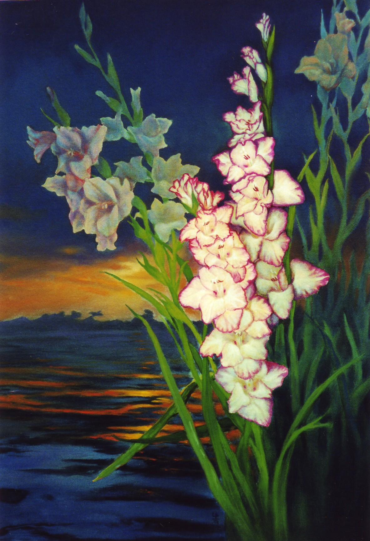 205.fleurs de nuit