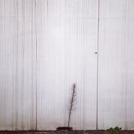 壁と線が友達みたい
