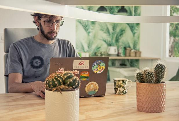 Palm Room - Flex Desks - TropiCoworking