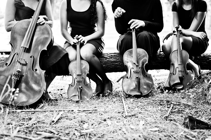 Aleit Music Shoot, Violin95.jpg