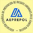 Aeprepol2color.jpg
