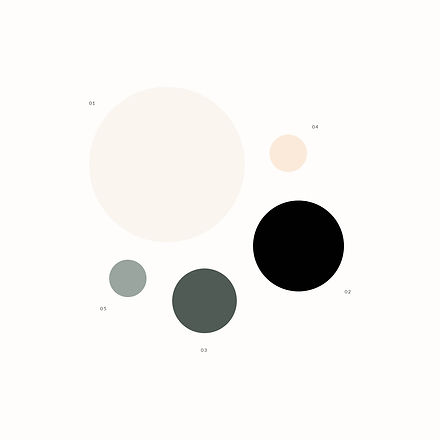 Brand color palette for champagne company