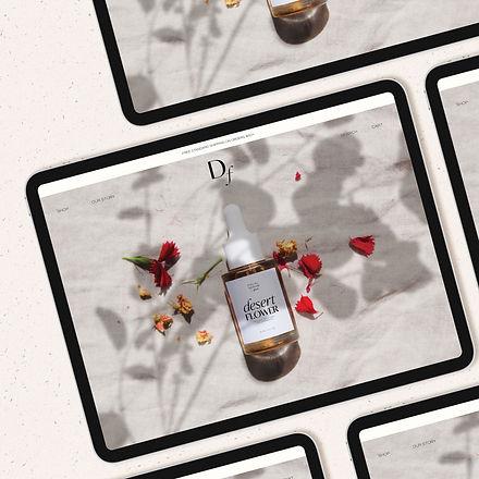 Desert Rose for Website.jpg