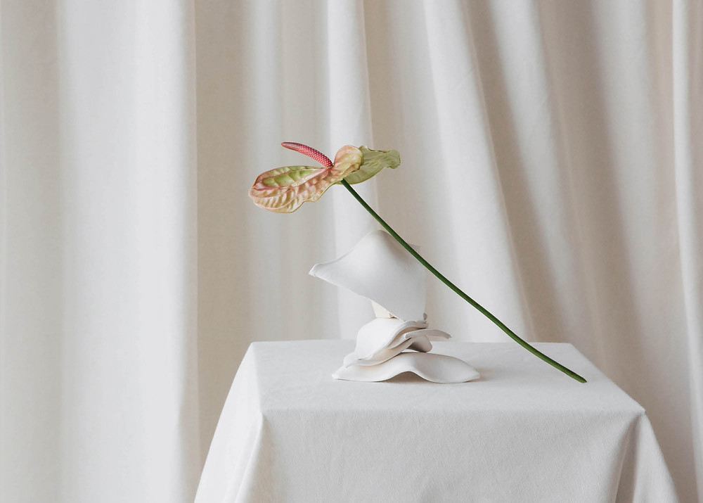 Anthurium flower on table