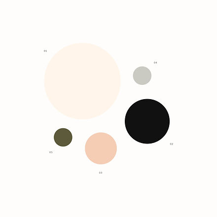 Color palette for skincare brand