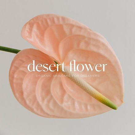 Desert Rose for Website5.jpg