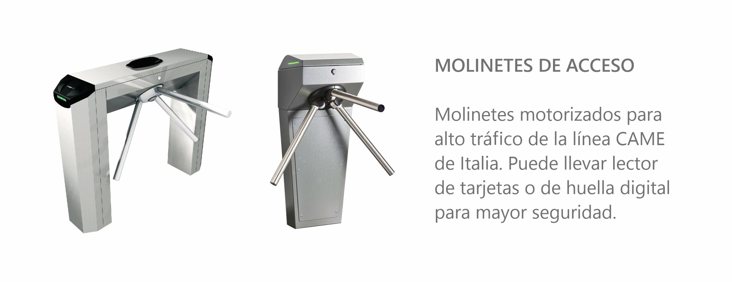 Molinetes CAME