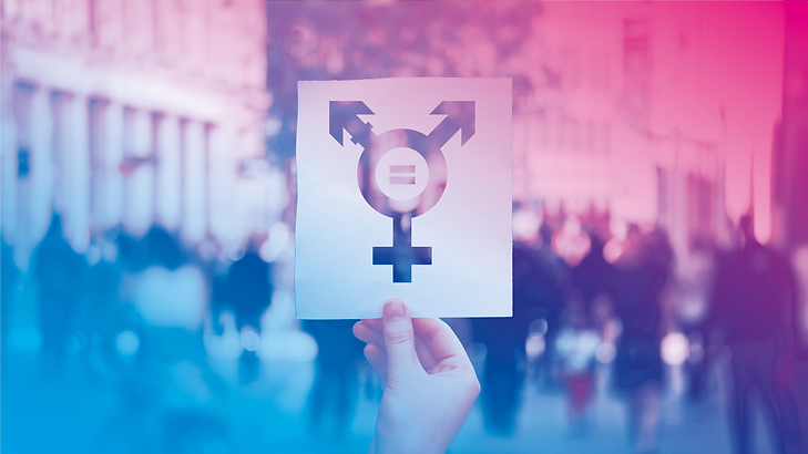 fond transgender fiertes.png