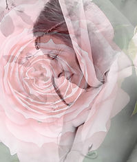Bautismo-Rosa-10.jpg