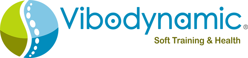Logo vibodynamic 2017.png
