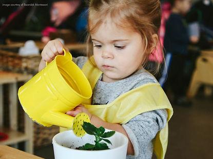 Child watering.jpg