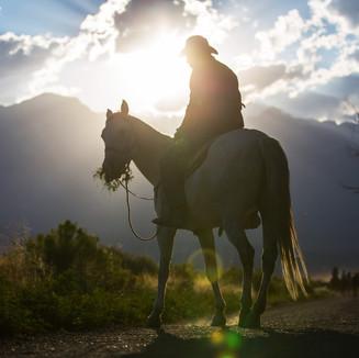 Cowboys riding a horse over the mountain