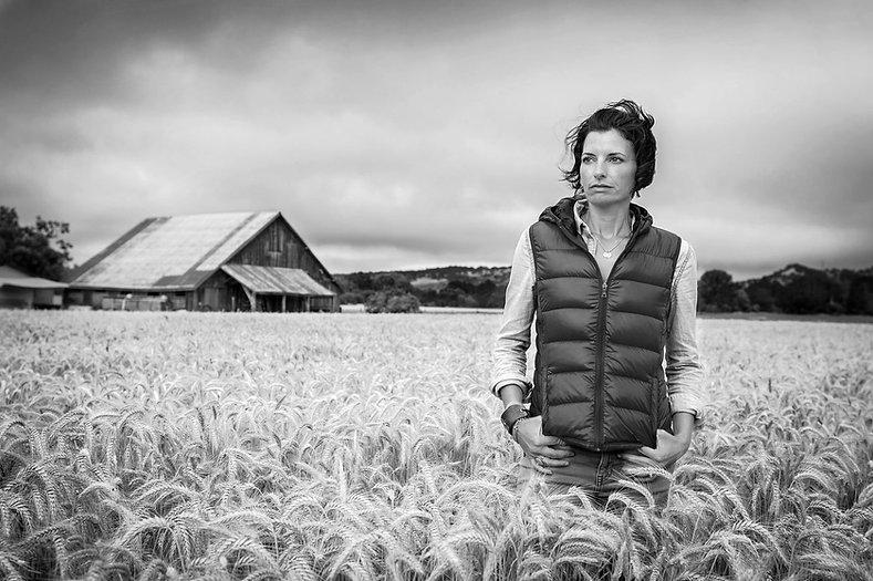 Harvest-Duhig-Wheat-Field_edited_edited.