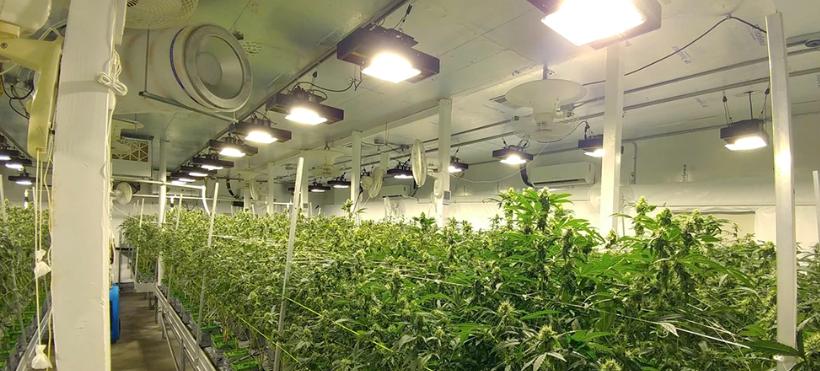 Grow Room2.png