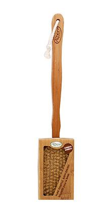 Wooden Back Brush