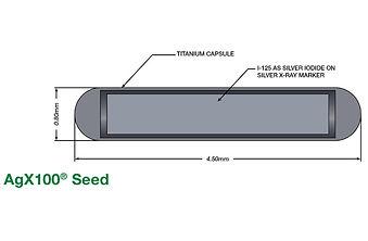AgX100 seed for LDR brachytherapydiagram