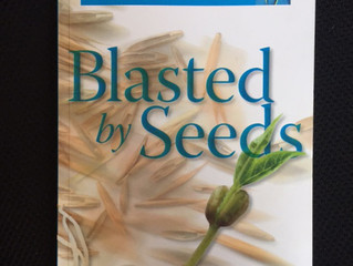 Blasted by Seeds – One Man's Story of Beating Prostate Cancer with Brachytherapy